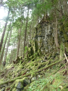 columns in Nooksack Falls dacite. A steep cross-country descent is required to reach this lava flow.