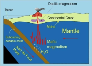Cartoon illustrating generalized path of mafic (basaltic) magma moving out of the mantle into the crust, where it might become dacitic (felsic) in composition. Image courtesy Sue DeBari, WWU geology.