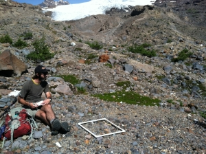 Paul and one of his vegetation plots below the Easton Glacier. Photo courtesy P. Whelan.