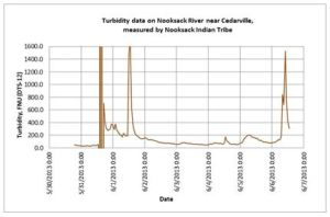 Chart showing spikes in Nooksack turbidity on May 31, June 1, and June 6. Courtesy Nooksack Tribal Fisheries.