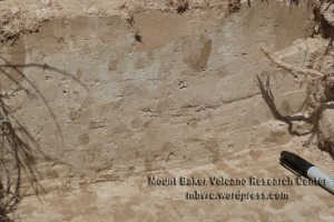 Detail of the 15-cm-thick Lake Tapps (Kulshan caldera) tephra at Washtucna. Nick Pearce photo.