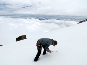 Ian Delaney collects snow samples on Boulder Glacier in June, 2013. Photo by Ryan Larson. Click to enlarge any image.