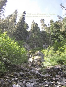 Jungle-covered andesite of Dobbs Creek is a thick flow guarded by steep slopes and brush.