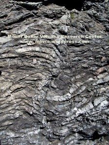 Ribbon chert deposited in the deep ocean is now exposed at Rosario Head.